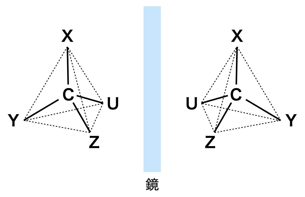 mirror image isomer