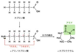 ε-caprolactum