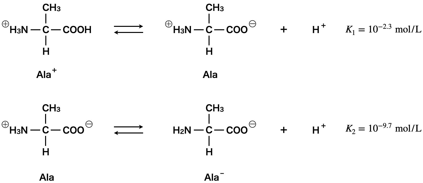 neutral amino acids