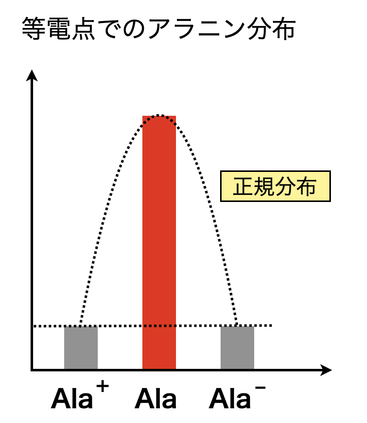 alanine distribution