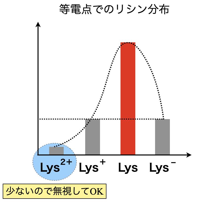 lysine distribution